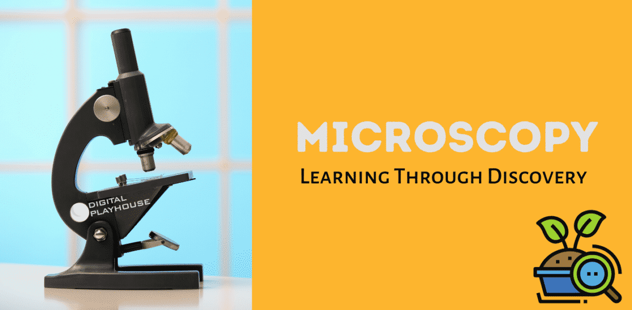Microscopy: Learning Through Discovery